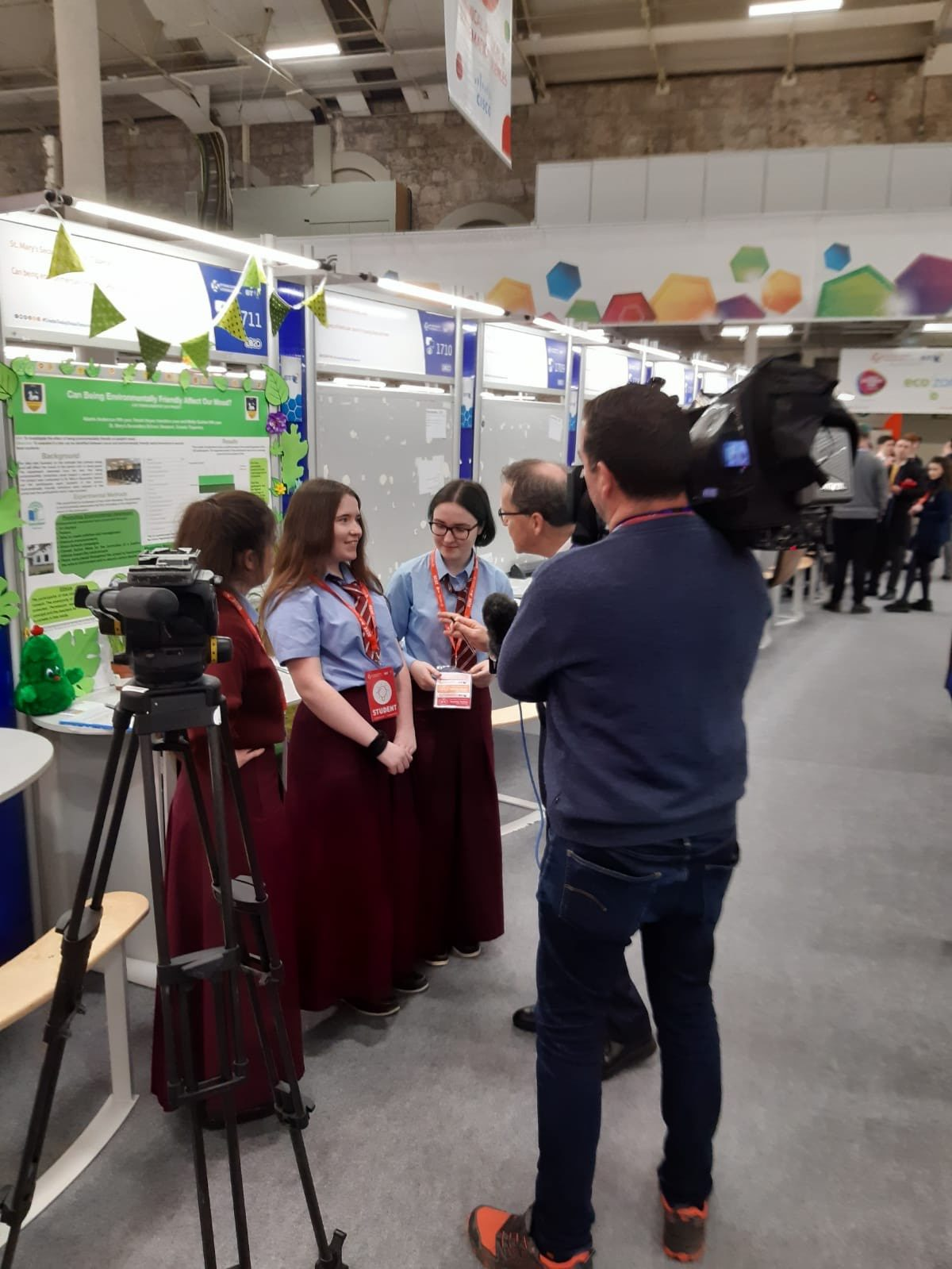 St. Mary's Represented at BT Young Scientist